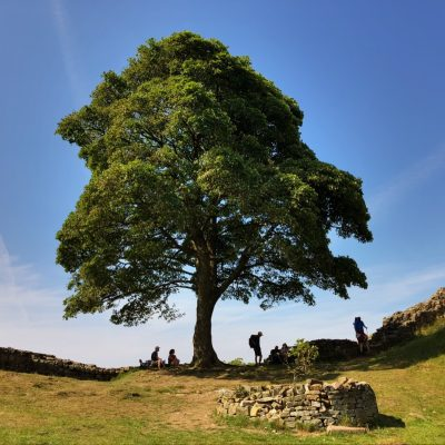 Hadrians Wall Walk – Part One